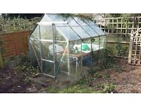 Greenhouse Approx 8 x 6 Free to anyone who can dismantle and collect