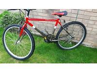 Small mountain bike. £10
