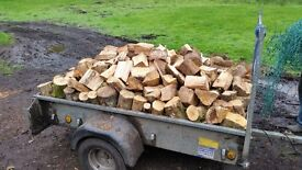 ++ LOGS/FIREWOOD FOR SALE ++ FREE DELIVERY ++ PROCEEDS TO CHARITY++ STOCK UP NOW ++