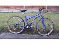 apollo 15 speed mountain bike for sale