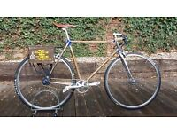 Terry Dolan Rat Look Bike with Shimano Auto D Automatic gearing hybrid commuter (not fixie)