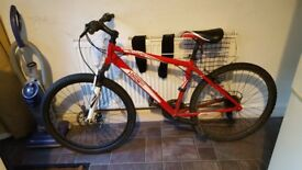 Adult motain bike