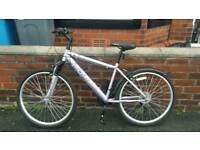 Ladies/Girls Appollo Bike