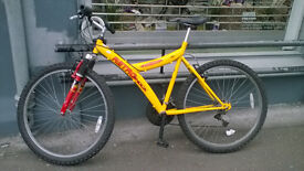 Adult Retroshock Bike (COLLECT BY 28TH AUGUST)