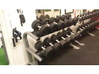 Various gym equipment clearance
