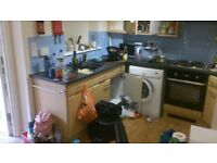 MC cleaning services, end of tenancy from £80, deep cleans from £12 per hour, oven clean from £35