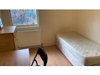 3 x Single Room to let
