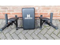 HARDCASTLE WALL MOUNTED COMBO DIP & KNEE RAISE STATION