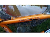 Kraken mountain bike