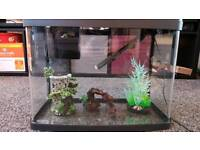 40 Litre Tropical Fish Tank & Accesories