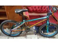 Fuzion BMX funky colour