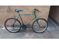 Mens Large Raleigh Hardtail Mountain Bike in Good Condition