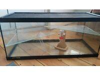 Large glass animal tank