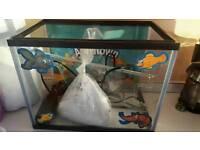 Aqua Town Starter Fish Tank (12L)