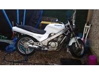 Honda revere 650