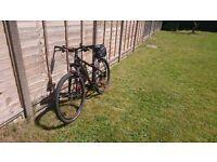 Mountain Bike Bergamont revox 5.0