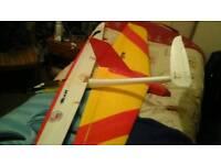 Rc electric glider Blaze
