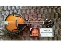 Aria Mandolin small compact AM20. 8 string, (bronze wound) wooden instrument. In superb condition