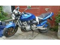 1998 Honda CB600 Hornet
