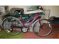 Dawes ladies shopper bike