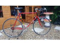 Mens Raleigh TI racer road bike
