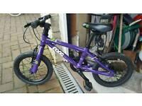 Frog 43 starter bike