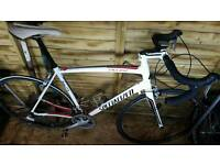 Specialized allez sport/ road bike
