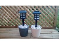 Garden plant pot lights