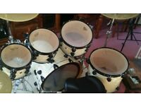 DW Collectors Series 5 Piece Maple kit 22x24 Bass Drum Black Hardware + All Hard Cases