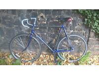 62cm All-Working Carbon-Frame Single-Speed Trek 2100 Road Bike