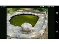 Wanted ... Stone edging for a pond