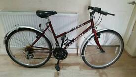 Fantastic 26inch womens raleigh mountain bike in good condition all fully working