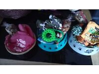 I have a variety of dog/cat treats and hampers, all branded products for make any female.