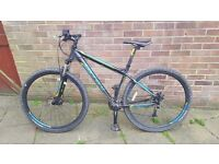Carrera Hellcat 29er - Great condition - Double Disk brakes - Front suspension