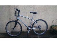 Silver mountain bike, D-lock included