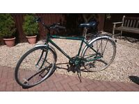 Vintage Green Cycle Raleigh Traditional Men's Bicycle