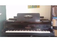 Hofmann baby grand piano - it's quite old but it's got a good mechanic and beautiful sound.