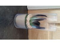 Imitation plant in glass cylindrical vase