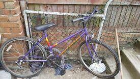 Righleigh bike