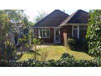 3 bedroom detached bungalow, Vincent road, £1300 pcm