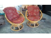 Bamboo chairs/Conservatory chairs