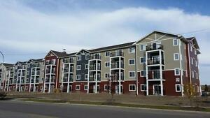 Brand New in Lacombe!!
