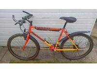 Raleigh yukon mountain bike
