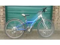 GIANT teenage bike