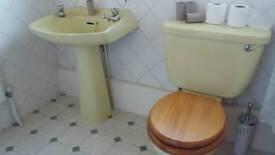 Bathroom Vintage primrose