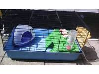 Guinea Pig Cage Exeter