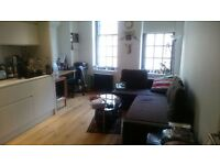 Modern 1 Bedroom Flat in Central London/Oxford Street 1 min. walk/Directly from the Landlord