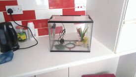 Fish Tank Aquarium With Heater, etc