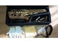Protege Alto Saxophone-Gold Lacquer