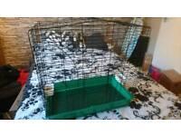 Large bird cage.